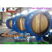 Concentric Actuated Double Flanged Butterfly Valve Worm Gear Operated With Pin Manufactures