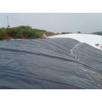 geomembrane liner Manufactures