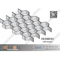 China Stainless Steel Hexmetal Grate | 2.0X20X50mm | China Hexmetal Manufacturer on sale