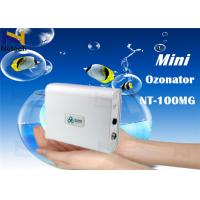 China Portable Ionizer Generator Commercial Ozone Generator cleanion Clean Room on sale