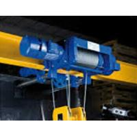 China low headroom electric hoist (LD) on sale