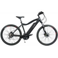 China High Speed Off Road Electric Mountain Bikes Fat Tire Battery Powered on sale