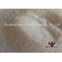 High Purity Local Anesthetic Pain Killer Procaine Hydrochloride / Procaine HCl CAS 51-05-8 Manufactures