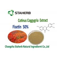 Anti-inflammatory and antiproliferative Smoke Tree Organic Plant Extracts 50% Fisetin Powder Cotinus Coggygria Extract Manufactures