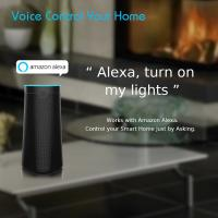 Custom Logo Smart WIFI Speaker Google Assistant With Built In 18650 Lithium Battery Manufactures