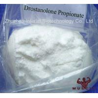 Muscle Growth Drostanolone Steroid Drostanolone Propionate CAS 521-12-0 Manufactures