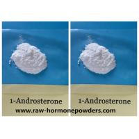 China CAS 76822-24-71-Andro  Prohormone Powder 1-DHEA 1-Androsterone on sale