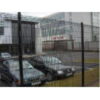 China Welded Iron Wire Mesh Fence (C-0046) on sale