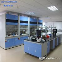 Customized Functional simple chemistry laboratory fume hood equipment furniture cupboards Manufactures