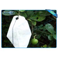 Nonwoven Agiculture Plant Grow Bags For Fruit Growth and Protection , Potato Grow Bags Manufactures