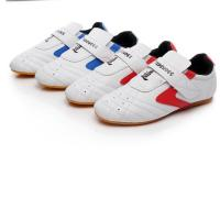 China Custom Boxing Kung Fu Tai Chi Taekwondo Sport Gym Shoes colour white blue red size 27-45 for adult and children on sale