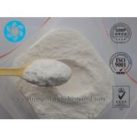 Pharmaceutical Chemical USP Standard Testosterone Acetate for Bodybuilding Supplements Manufactures