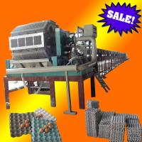 China paper pulp molding egg tray making machine on sale