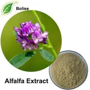 China C42H62O16 Medicago sativa. Herbal Extract Powder on sale
