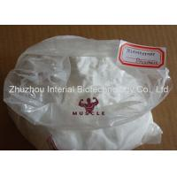 99% Purity White Raw Powder Testosterone Decanoate Test Decanoate For Injectable Manufactures
