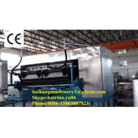 High Quality Egg Tray Machinery with CE Certificate Manufactures