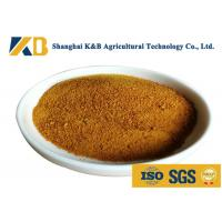 CGM Granules Corn Gluten Feed For Rich Amino Acid Vitamin And Mineral Matters Manufactures