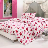 Korean style printed coral fleece bedding set Manufactures