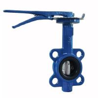 Manual Cast Iron Butterfly Valve Wafer Pattern With Flexible Flange End Manufactures