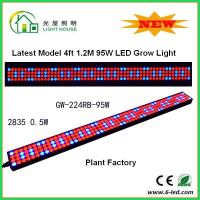 1200mm Hydroponic Led Grow Light 1200mm For Greenhouse , Energy Saving Manufactures