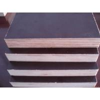 Quality Brown Film Faced Plywood for Formwork for sale