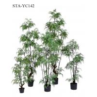 150CM 180CM Artificial Fern Tree  Eco Friendly Good Touching Office Decoration Manufactures