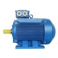 China High Voltage 3 Phase Induction Motor / Squirrel Cage Induction Motor on sale