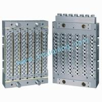 PET Preform Mould with Hot Runner System (72 Cavities) Manufactures