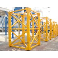 OEM standard section for tower crane exported Manufactures