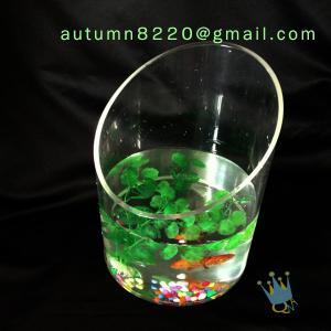 Modern acrylic aquarium fish tank Manufactures