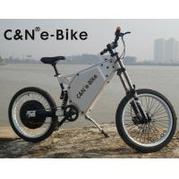 Adult Mid Drive Motor Electric Off Road Bike With 30Ah Lithium Ion Battery Manufactures