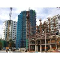 ISO Quality Building Steel Frame For Residential Buildings With Paint Treatment Manufactures