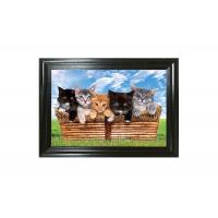 Cute Craft Paper Printing Lenticular 3D Pictures Of Animals Wallpaper Manufactures