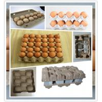 350 -3000 Pcs / H Pulp Egg Tray Making Machine With High Production Speed Manufactures