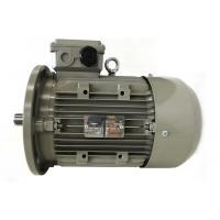 China 0.09kw-11kw Ms Aluminum Casing IEC Standard Motor , Three Phase Asynchronous Motor on sale