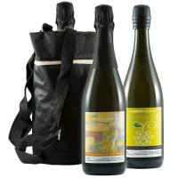 Special 2 Wine cooler bag  Manufactures