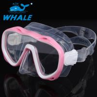 Premium Pink Silicone Diving Mask , No Fog Dive Mask UV Protection No Leaking Manufactures
