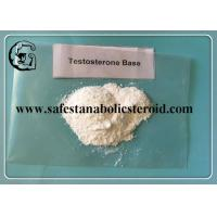 Muscle Building Anabolic Steroids Testosterone Base White Powder for Gaining Muscle CAS 58-22-0 Manufactures