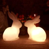 animal night light/rabbit/gift/homemade christmas gifts/wedding/valentines day gifts/ Manufactures