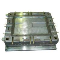 China Injection Mold/ Injection Moulds for Car Interior & Accessories/ Car Body Kit (TS188) on sale