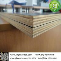 China Black film face plywood on sale