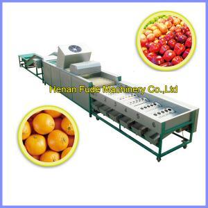 China citrus orange cleaning, wax polishing ,grading machine on sale