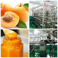 China Peach \ Apricot \ Glass Bottle Beverage Production Line Per Hour on sale