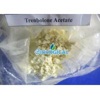 Trenbolone Acetate Steroids Powder Tren Acetate 10161-34-9 for Big Muscle Growing Manufactures