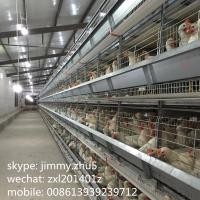 China Hot selling 96 birds 4-tiers galvanizing H type poultry battery cages for layers in kenya chicken farm on sale
