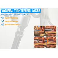 Vaginal Tightening Fractional Co2 Laser Machine / Scar Removal Machine Manufactures
