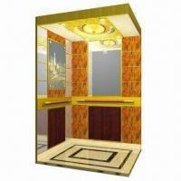 Home/Villa Elevator, Customized Designs are Accepted, Convenient to Install, CE Certified Manufactures