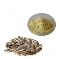 Baby Food Additives Organic Plant Protein Powder Natural Sunflower Seed Extract Manufactures