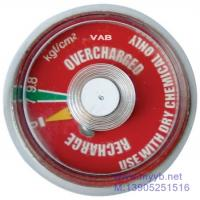 fire pressure gauge series Manufactures