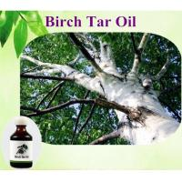 China Natural Birch Tar Oil plant essential oil on sale